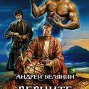 Верните вора. Книга 3-я из цикла «Багдадский вор», Андрей Белянин