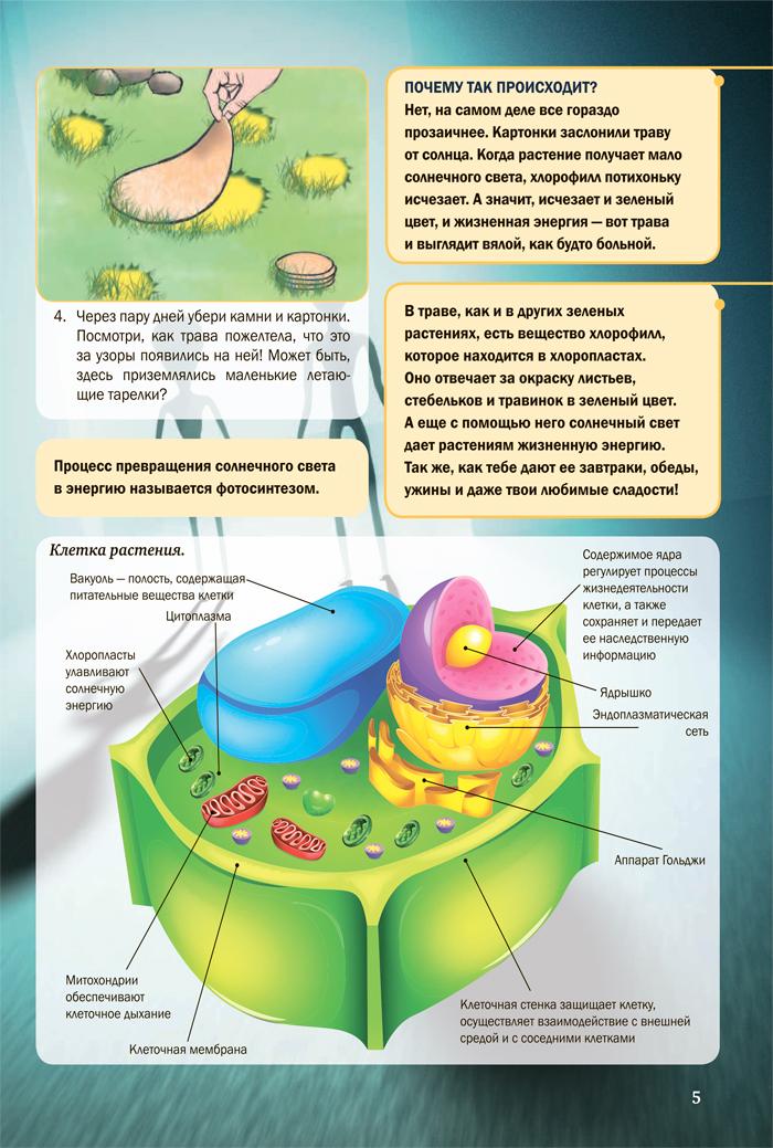 Фрагмент Научные опыты и эксперименты. 4D энциклопедия в дополненной реальности